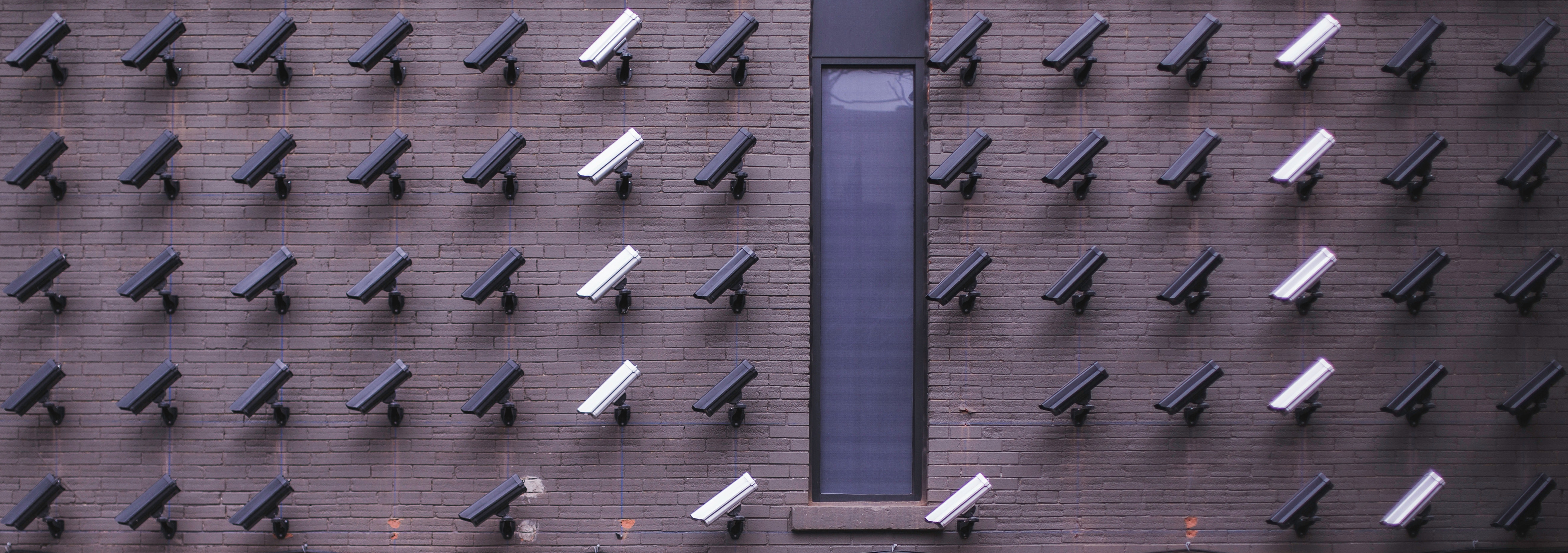 how companies protect themselves blog image